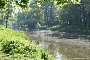 GR5A Palingbeek1